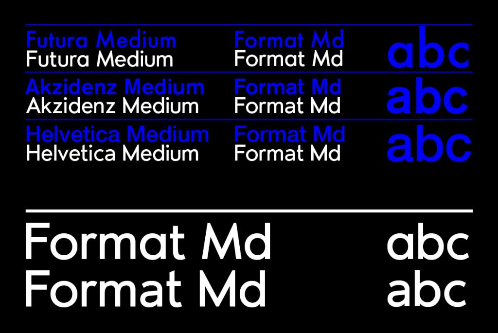 format_sans_posters-basics